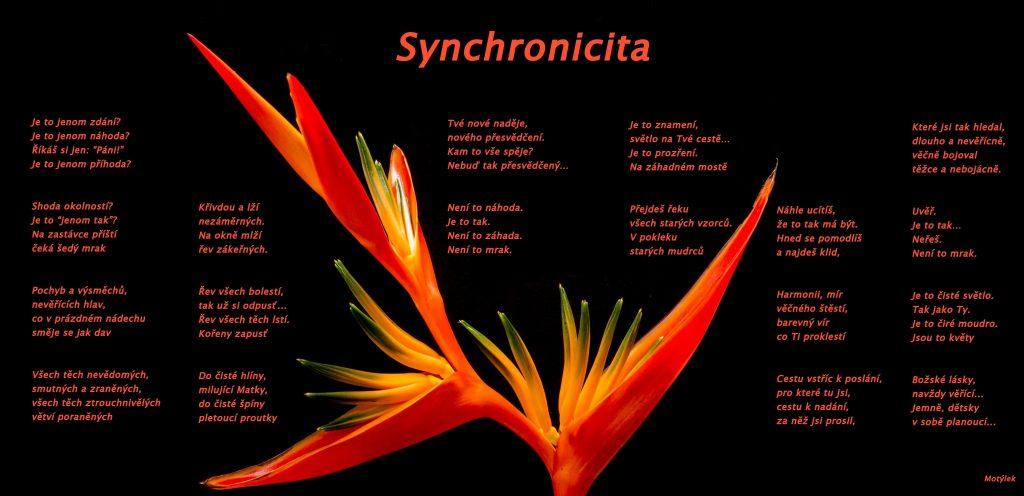 Motivační plakát Sychnronicita - umělecká báseň od Motýlek - Nuataa Sonáya